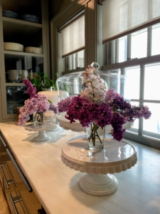 On the servery counter, more fragrant lilacs. Lilacs come in seven colors: violet, blue, lilac, pink, red, purple and white. The purple lilacs have the strongest scent compared to other colors.
