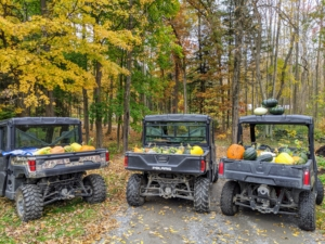 In autumn, we use three Polaris vehicles to haul all our pumpkins and gourds from the pumpkin patch to various locations around my home.