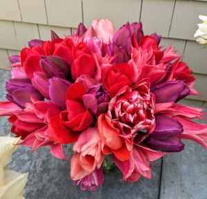 And here is another arrangement with dark pink, red, and purple blooms. What tulips are in your garden? Share them with me in the comments below.
