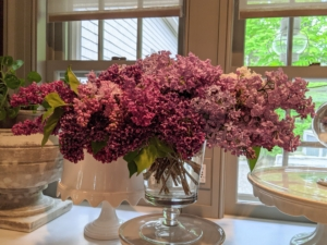 And here's another arrangement in my Winter House servery. Lilacs – filled with color and fragrance – make a wonderful addition to any garden and any home.