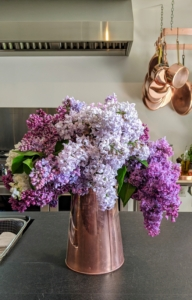 If enjoying them as cut flowers, cut the lilacs right at their peak, when color and scent are strongest, and place them in a vase as soon as possible. Here is an arrangement on the soapstone counter of my newly redone studio kitchen.