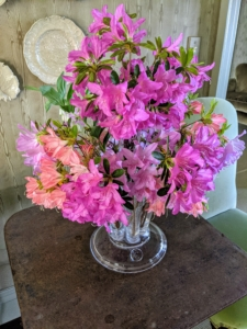 We even cut some azalea blossoms to add to this arrangement I did myself. This one is displayed on a table in my Sitting Room.