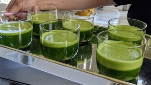 The green juice was made just before guests arrived on the terrace. I have a glass of green juice every morning without fail. It's a fast and delicious way to consume all those healthy vegetables and fruits. It increases energy, strengthens the immune system and is so good for one's skin. Everyone loved their green juice and finished every drop.
