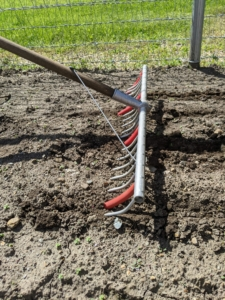 To make the furrows for the seeds, Ryan uses Johnny's Bed Preparation Rake to make five long furrows in the bed - first he makes four and then he moves over and creates a fifth furrow - we always try to fit as many vegetables in each bed as possible.