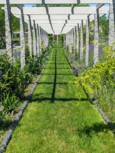 The pergola runs from the flower cutting garden all the way to the back of my carport. The uprights for this pergola are antique granite posts from China – originally used as grape supports in a valley that was going to be dammed and flooded to create a reservoir.
