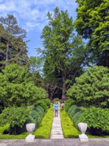 And then they walked behind the Summer House to see the sunken garden. It's often a favorite stop for these small garden groups. The boxwood and smaller ginkgo trees look very lush and green. Ryan pointed out the tall, old Ginkgo tree at the back – the focal point of this garden.
