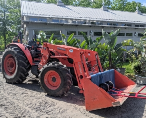 My outdoor grounds crew uses this Kubota model M7060HD12 tractor to move many of them. This vehicle gets so much use here at the farm every single day. Moving such a large potted plant requires strength, care, and the right equipment. A moving blanket cushions the pots on the loader as they are moved.