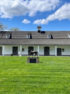 Here is a statue of Mill Reef in the Broodmare Barn courtyard. Mill Reef was probably Paul Mellon's most successful racehorse. He raced in Europe between 1970 and 1972, where he won the Epsom Derby, the Eclipse Stakes, the King George VI and Queen Elizabeth Stakes, and the Prix de l'Arc de Triomphe.