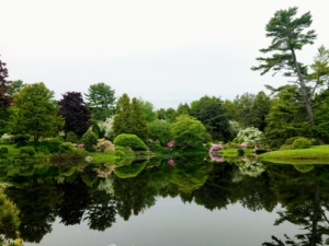 Look at the beautiful reflection in the still water - simply gorgeous. Asticou Azalea Garden was built for quiet enjoyment, and intended for relaxation and contemplation.
