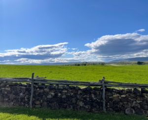 This view from the Road of Rokeby shows the Blue Ridge in the background. This was the Mellon's first foothold in Virginia, purchased in 1931 by Andrew Mellon for his son, Paul. Here you can also see the mile-long airstrip that the Mellons used for their private jet.