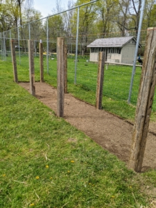 Once the ground is cleared and level, Pete and Fernando place eight strong posts equally spaced along both sides of the coop located in one corner of the yard.