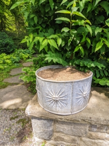 Each of the four round lead antique planters is decorated with cheerful repeating sunbursts. I knew, right away, that they would look stunning on this low stone ledge in front of my White Garden.