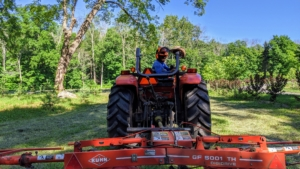 Here is Chhiring with the tedder attached to our trusted Kubota M7060HD12 tractor – a vehicle that is used every day here at the farm.