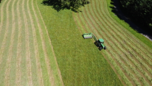 Chhiring follows the shape of the field and works from the outside in - until every bit of hay is cut.