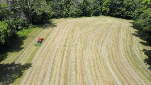 The parallel bar rake picks up the cut and drying hay and rakes it into more windrows that can be baled.