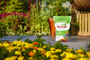 """I always say, """"if you eat, so should your plants."""" Miracle-Gro's Osmocote Flower and Vegetable Smart Release Plant Food used in the spring and the fall is all that's needed to achieve simultaneous and long-lasting top growth and strong, hearty root development. This plant food is perfect for perennial, annual, and vegetable gardens."""