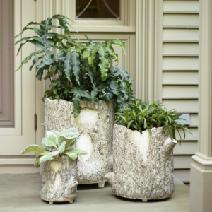 """On Martha.com, you can get all the gardening planters I designed such as these Martha Stewart Faux Bois Planters. Embodying rustic charm with a realistic all-over bark texture, these planters match form with function. They feature raised feet and a drainage hole. The planters can be used indoors and out. They're lightweight and come in three sizes - 9"""", 14"""", and 19""""."""