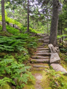 """The tours bring guests up the steps from the guest house to my main house. The rocks on the outside of the stone steps toward the top are called """"Rockefeller's Teeth"""" – large blocks that serve as guardrails. These stone steps are cut roughly and spaced irregularly to create a rustic appearance."""