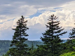 Cheryl captured this view as the storm clouds rolled in. I love Skylands - it is so magical any time of year.