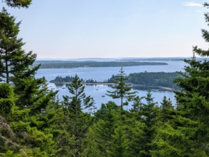 This is one of the magnificent summer views from my terrace at Skylands - looking out over Seal Harbor with Sutton Island in the distance.
