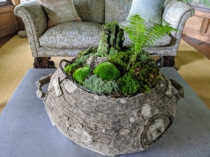 And here is another miniature woodland arrangement in the living room. I love to fill several of my planters with natural elements. Various mosses, lichens, seedlings, pine needles, stones, and old pieces of wood are brought in to create miniature forests that last all season long. Skylands is such a magical place for me and my family - I can't wait to return. Thanks for the photos, Cheryl.