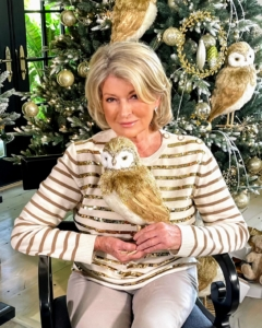 Here I am in my newly renovated studio living room holding one of my newest holiday items for QVC. I love this whimsical and fun Metallic Fur Owl. It adds a playful accent to seasonal decor.