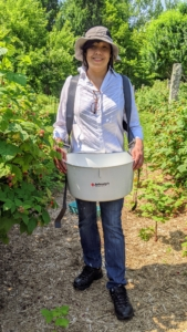 Here's Elvira using a harvest bucket from Johnny's Selected Seeds. She loves it because it allows her to pick with both hands. The bucket is wide, durable, and has an 18-quart capacity.