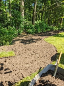 Back in June of last year, I decided I wanted to expand this border, so we cut out the sod and tilled the earth in preparation for planting.
