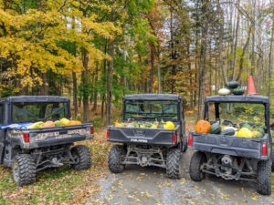 In autumn, we use the Polaris vehicles to haul all our pumpkins and gourds from the pumpkin patch to various locations around my home.