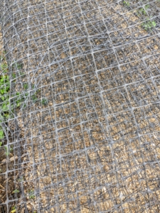 We use netting from the old deer fencing that once surrounded the farm. I save everything I feel can be reused and because these structures are outdoors, it is important that they are strong and secure, so they could hold the weight of the plants and fruits, and any strong winds we may get during the growing season. This netting will be perfect.
