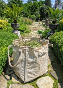 All the cuttings are placed into my Martha Stewart Multi-Purpose Heavy-Duty Garden Tote Bags. We use these bags all over the farm. Each tote can hold more than 900-pounds!
