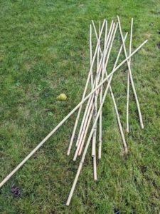 Bamboo comes in a variety of lengths and is easy to find at garden supply stores.