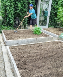 Once all the seeds are dropped into their various beds, Ryan uses the back of a tine weeding rake, also from Johnny's Seeds, to backfill all the furrows. This model is also good for working in tight areas.