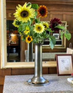 The sunflowers also bloomed very nicely this year. Sunflowers, Helianthus, are the popular and cheerful annuals whose round flower heads look like the sun. Sunflowers come in vibrant yellow, but they're also seen in orange, red, bronze, and even white.