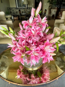 Here are more glorious pink lilies. Lily flowers are large and come in a range of colors including yellows, whites, pinks, reds, and purples. These plants are late spring- or summer-flowering. They are native to temperate areas of the Northern Hemisphere.
