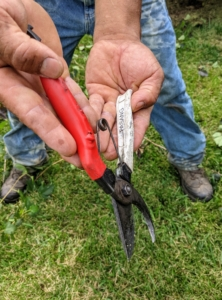 Each member has his own pair of pruners - labeled, so there is no confusion. These are Okatsune secateurs. Bypass garden pruners such as these make nice, clean cuts using two curved blades that bypass each other in the same manner as a pair of scissors. One blade is sharpened on the outside edge and slips by a thicker unsharpened blade.