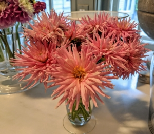 Or as a bunch of the same variety. The striking colors and forms look so pretty. The stems don't have to be too long – we cut these to about a foot each and then trimmed them indoors to fit these vessels.