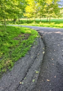 Here's more of the eroded carriage road after the rains.