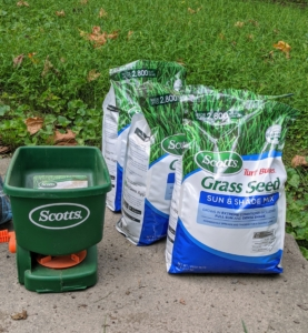 We use grass seed made by Scott's. This versatile mix stays green through the year in either dense shade or full sun. You can also find some of Scott's other products on my new e-commerce site at Martha.com.