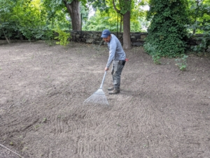Next, Chhiring uses a soft rake over the entire space to loosen the top layer of soil. This gives the grass seed direct access to the soil so it can root more easily after germinating.