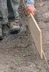 To ensure no grass is seeded in the garden bed marked, Chhiring uses a piece of plywood to divide the two spaces while applying the seed.