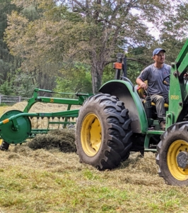 The parallel bar rake picks up the cut and drying hay and rakes it into windrows that can be baled. A windrow is a long line of raked hay laid out to dry in the wind.