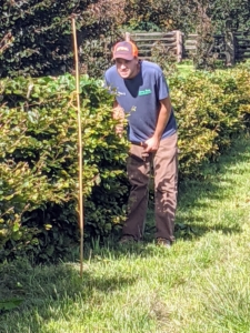 Here's Brian looking at the twine stretched alongside the hedge. The plan is to cut all the hedges down several inches. Brian checks the line several times during the process to be sure everything is trimmed properly.