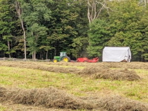 Chhiring drives the baler slowly over every windrow. All the hay is dry and passing through the machine smoothly. If the hay is properly dried, the baler will work continuously down each row. Hay that is too damp tends to clog up the baler.