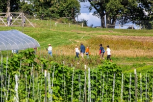Some guests also walked through the garden fields. (Photo by David Hechler for Stone Barns Center for Food & Agriculture)
