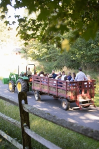 Visiting groups for Harvest Feast are limited to 16, so all can see the farming grounds by hayride. It was a very pleasant early fall day - perfect and very safe for this outdoor tour. (Photo by Mike Falco for Stone Barns Center for Food & Agriculture)