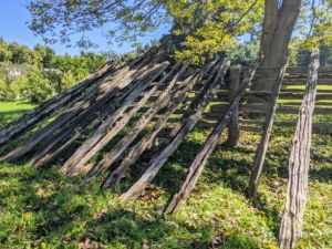 The pasture fencing is made from 100-year-old white spruce railings. I purchased all the antique railings from Canada. So many of you have commented on how much you love these fences that surround all my paddocks here at the farm - I love them too.