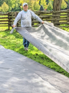 Fernando unrolls another long sheet of weed cloth to cover the next section.