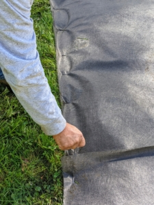 Fernando uses garden sod staples to keep the cloth secure to the ground.