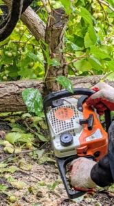 These STIHL chainsaws all have a smooth start-up, quick refuelling feature, and are simple to use. We've used STIHL's chainsaws for years.